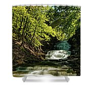 Cascadilla Gorge Falls Shower Curtain