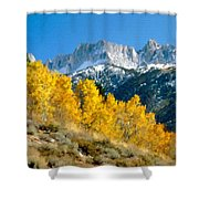 D C Landscape Shower Curtain