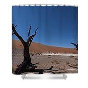 Death Tree Hidden Vlei Shower Curtain