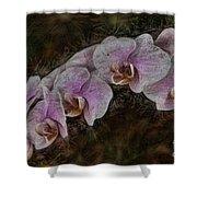 5 Dollar Orchid Shower Curtain