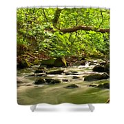 Framed Landscape Shower Curtain