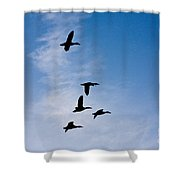 5 Geese Shower Curtain