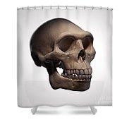 Homo Erectus Skull Shower Curtain