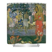 Ia Orana Maria Hail Mary Shower Curtain