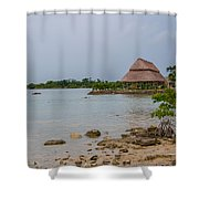 Laguna Guerrero Shower Curtain
