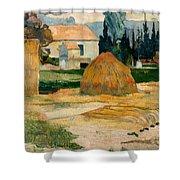 Landscape Near Arles Shower Curtain