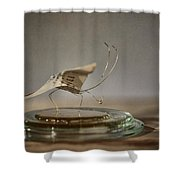 Paper Butterfly Shower Curtain