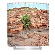 Sandstone Color In Valley Of Fire Shower Curtain
