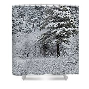 Snowstorm In The Pike National Forest Shower Curtain