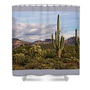 Sonoran Desert  Shower Curtain