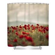 Summer Poppy Meadow Shower Curtain