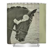 Victory Gallop Shower Curtain