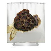 Wooden Decorations Shower Curtain