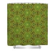 Arabesque 076 Shower Curtain