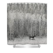 4147 Shower Curtain