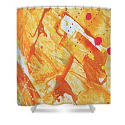 507 Shower Curtain