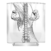 Bw Sketches Shower Curtain