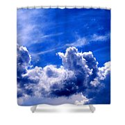 Living Landscape Shower Curtain