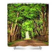 Landscape Native Shower Curtain