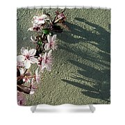 Tree Blossoms Shower Curtain