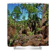 55- Everglades Afternoon Shower Curtain