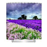 Paint Landscape Shower Curtain