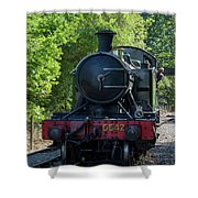 5542 On The The Points Shower Curtain