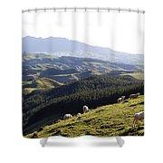 New Zealand Shower Curtain