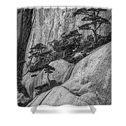 5867- Yellow Mountains Black And White Shower Curtain