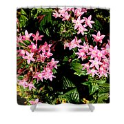 Love Flowers Shower Curtain