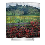 5b6301 Vineyards Of Color Shower Curtain