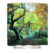 6 Abstract Japanese Maple Tree Shower Curtain