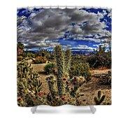 Anza-borrego Desert State Park Shower Curtain