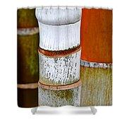 Bamboo Palm Shower Curtain