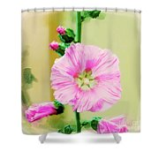 Common Hollyhock  Shower Curtain