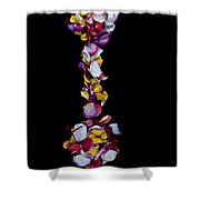 Concept Rose Shower Curtain