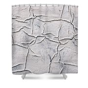 Cracked Paint Shower Curtain