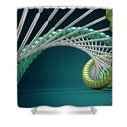 Dna Structure Shower Curtain