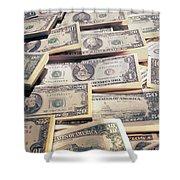 Dollar Shower Curtain