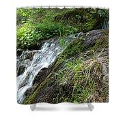 Waterfall 1 Shower Curtain