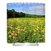 Marengo Ridge Wildflowers Shower Curtain