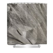Royal Botanical Garden Of Madrid Shower Curtain