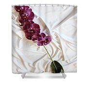 Silk Flower Shower Curtain