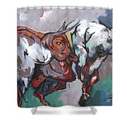 The Bulls Shower Curtain