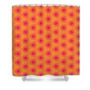Arabesque 057 Shower Curtain