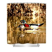 6980 - Wood Duck Shower Curtain