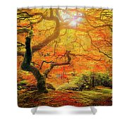 7 Abstract Japanese Maple Tree Shower Curtain