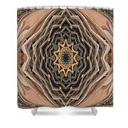 Abstract Series Shower Curtain