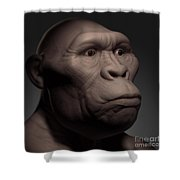 Australopithecus Shower Curtain