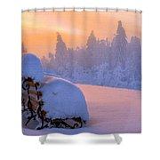 Az Landscape Shower Curtain